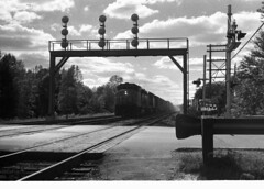 Untitled-Grayscale-10075 (citatus) Tags: toronto cn photo crossing railway scarborough