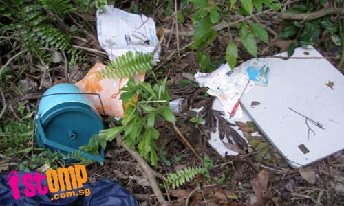 Foreign workers leave wooded area in mess after picnic