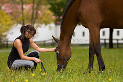 FRIENDSHIP (Nino H) Tags: horse canada girl sport cheval quebec beaut qubec chic elegant fille chevaux lgance dressage quitation eeasterner