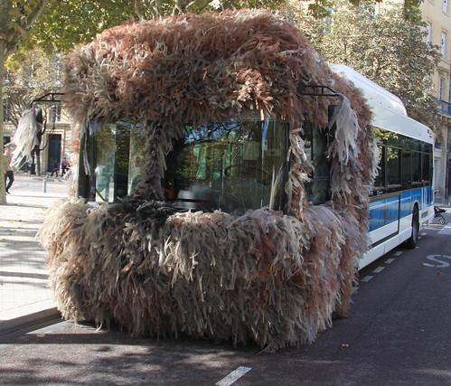 WTF Bus