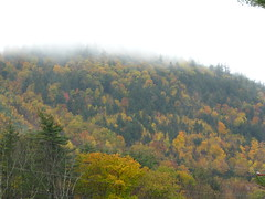 Old Hampshire with the Girls 064 (destiny_studios) Tags: autumn fall newhampshire letterboxing foliage