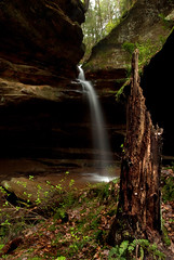 Hocking Hills Side Waterfall - Triptych 2 - Stumped! (VermontDreams) Tags: ohio waterfall log triptych falls waterfalls stump oh hockinghillsstatepark queercreek wnywaterfallers hockinghillswaterfall