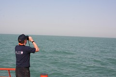 Bird and Mammal Watching, Persian Gulf