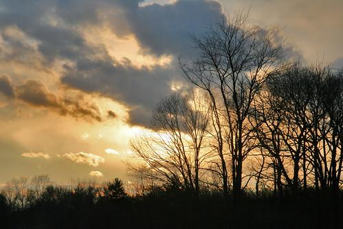 winter sky 5