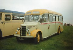 Bedford OB GUJ 356 (Routeman) Tags: bedford ob merediths malpas duple gittins crickheath guj356 meredithsofmalpas