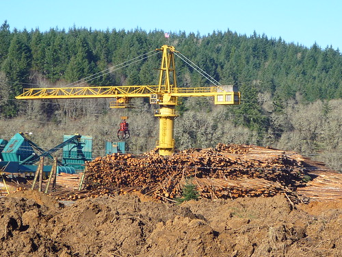 timber machinery