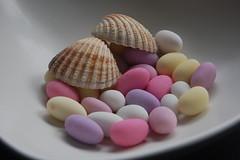 Sugar Shells 2 (Merchant Venturer) Tags: stilllife shells macro modern seashells sweet pastel funky sugar attractive sugaredalmonds pastelcolours