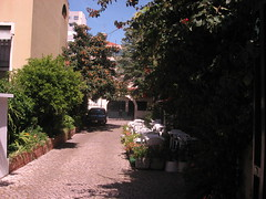 Walk from Campo Grande to Marques de Pombal  054 (Tom J Bettler) Tags: portugal walk lisbon campogrande marquesdepombal