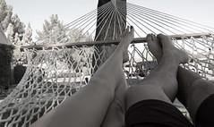 37/365 alternate ([Chrysty]) Tags: feet phoenix hammock nailpolish dayoff project365 futab feetuptakeabreak rogueplayers