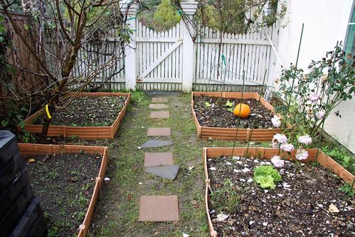 vegetablegarden20090209