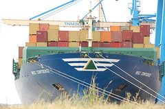MSC CONFIDENCE (LeHavreShips) Tags: france port photos ships container bow containership msc lehavre hatsu proue bulbousbow trave etrave lehavreships porteconteneurscontainerschiffbuque portacontenedor bulbeetrave