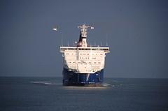 7AM ARRIVAL (LeHavreShips) Tags: france port boat google ships vessel container bow msn tanker msc facebook lehavre proue bulbousbow trave etrave 14072009 lehavreships bulbeetrave