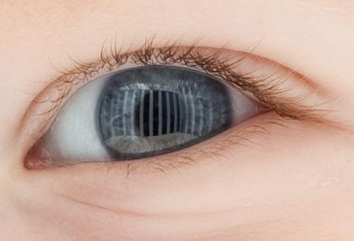 Baby's-Eye View