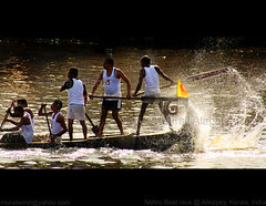 Speed and splash (Light and Life -Murali ) Tags: india lake race boat kerala trophy splash nehru alappuzha nehrutrophyboatrace vallam punnamada vallamkali chundanvallam img7471cp2sc splashandspeed