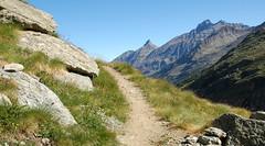 Sentiero di montagna (Paolo DELMASTRO) Tags: sentiero montagna valsavarenche grivola parconazionaledelgranparadiso grannomenon