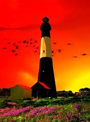 lighthouse 1 (SOUTHERN HEART) Tags: flowers sky lighthouse birds wow sensational aclass mywinners colorphotoaward flickraward simplysuperb peaceawards