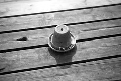 Ashtray (Rutger Blom) Tags: wood bw public table skne europa europe sweden skandinavien butts flowerpot sverige ashtray bord ske trd hout scania zweden tafel bloempot asbak skane peuken blomkruka askkopp fimpar