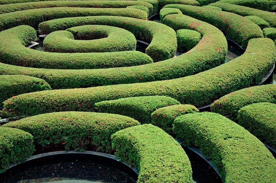 Getty Maze