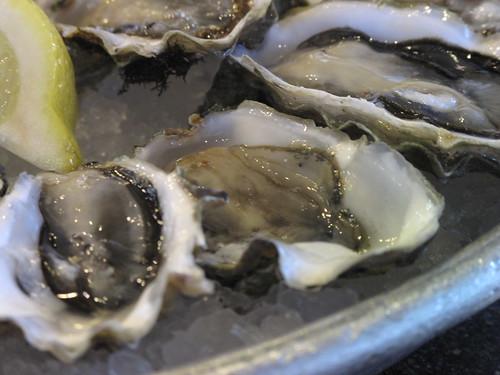 Oyster Closeup