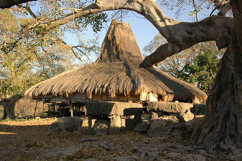 Sumba traditional House