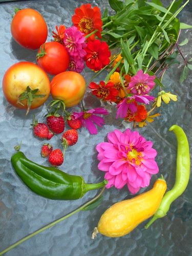 garden bounty 10 12 09