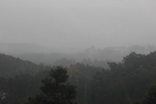 Pfalz 2009