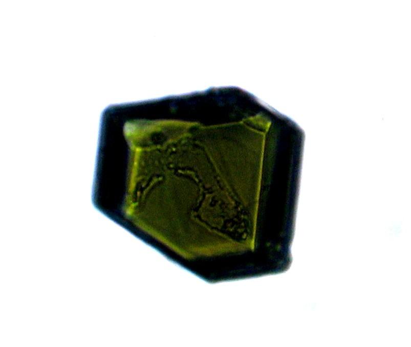 Clinopiroxena (augite?) / Clinopyroxene (augite?)