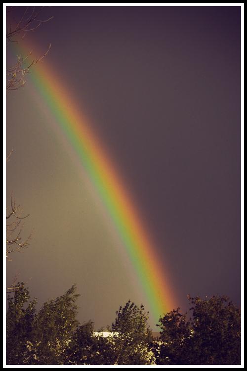rainbow_vintage
