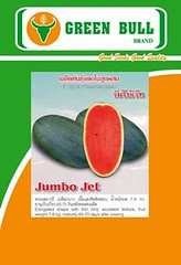 "ht ging da hu ""Jumbo Jet""  "" "" (WatermelonSeeds) Tags: thailand cu cucumber watermelon bittergourd chilli brand jumbojet pumkin cau qua greentiger greenocean pumkinseeds watermelonseeds greenbull dacbiet duahau khoqua chatluongcao raucuqua dualeo duachuot laif1 greenbull84 thailanchatluongcao hatgionglaif1 hatgiongbidao thongthae waxgourdseeds hatgiongbido grandvangthong supergreenbull hatgiongdualeo cacloai hoavantho hatgoing trongloai nhapkhaututhailan hatgoinghoacacloai dacbietcucvantho hatgiongdatchuannhapkhau greenbullseed greentiger51 hatgiongduahau hatgiong giongduahau giongdualeo hatgiongduachuot giongduachuot trongduahau trongduahaudep duahaudep"