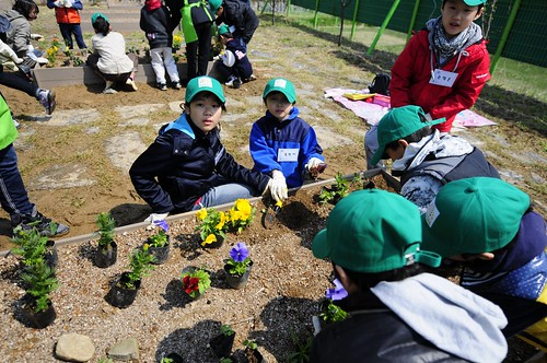 Junior Master Growers-Korea plant flowers in the People's Garden at the Gwacheon National Science Museum.
