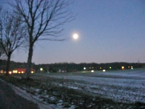 fullmoon over the field