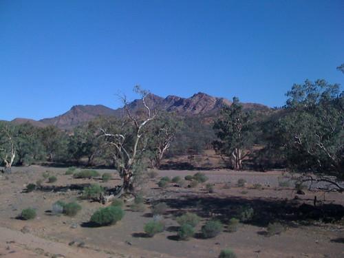Flinders Ranges - 30