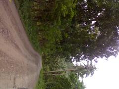 241220083769 (farfrom_perfect) Tags: philippines dirtroad aklan nabas barangaylaserna
