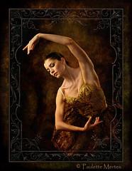 Perfectly Graceful (Paulette Mertes) Tags: portrait ballet canon textures paintingwithlight studioportrait studiolighting balletdancer megashot goldsealofquality tumiqualityphotography