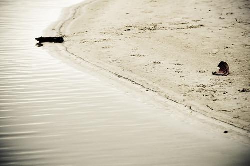 Spiaggia chimica - Rosignano Solvay - Chemical Beach