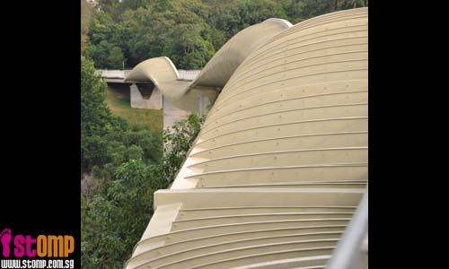 Stressed out? Relax at the beautiful Henderson Waves and Forest Walk