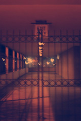 Gated ethereal lonely hearts exit only (bijoubaby) Tags: life seattle light orange color sign metal night hearts gate closed 6ws with spirit sixwordstory broadway funeral journey ethereal only end april mementomori wa lonely gated exit nothing naranja valhalla 2009 capitolhill shut heartshaped afterlife funeralhome rhymes purge p171 lightreflex blorenge rhymeswithorange netneutrality purgevalhalla purge171 protectedbydbb1 matters2me simitrias