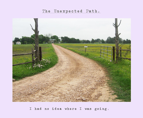 the unexpedcted path final