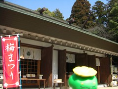 Skiploom in Mito, Ibaraki 23 (Tokiwa shrine) (Kasadera) Tags: toys figure pokemon mito  tokiwashrine skiploom    floravol hubelupf