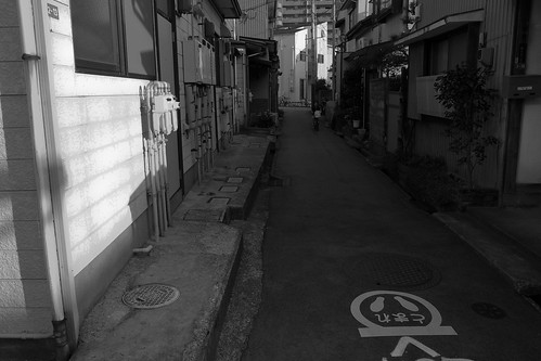 niigata monochrome 15