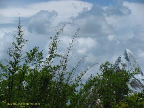 IMG_1467-WDW-DAK-tip-of-mountain
