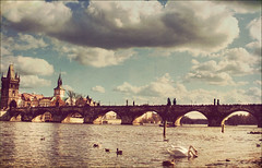 Prague - A quiet afternoon (manlio_k) Tags: bridge water clouds vintage river swan prague praha retro charlesbridge