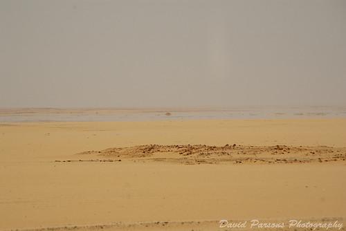 Western Desert - Mirage