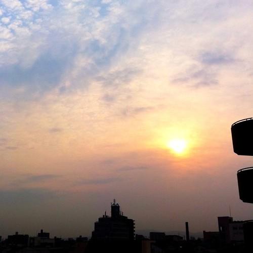 今日の写真 No.253 – 昨日Instagramへ投稿した写真(3枚)/iPhone4+Camera+