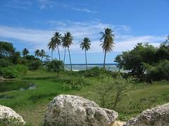 Gwada - Guadeloupe (@claudiamafalda) Tags: caribbean guadeloupe antilles gwada caraibi westindies guadalupa