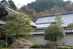 10-Nansen-in garden_roofs