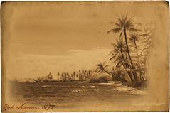 1872 (- Virgonc -) Tags: ocean old sea texture beach water rock vintage paper ir thailand island sand nikon d70s wave palm ko samui infrared koh infra memoriesbook virgonc wwwvirgonccom artistictreasurechest