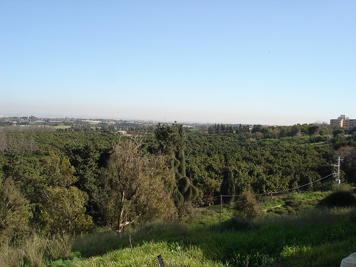 A view of Israel's Sharon region