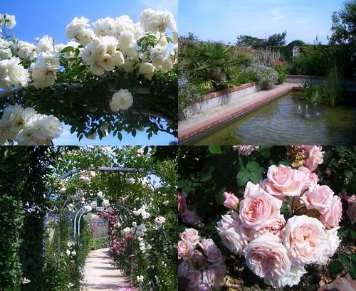 dior_garden