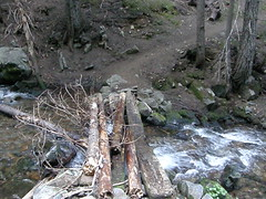 Creek crossing not far past junction on Crystal Peaks trail.
